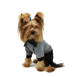 Tutina superchic per cani