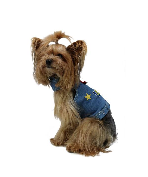 pettorina love royaldog